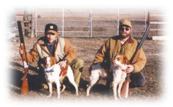 Quail hunting dogs at Flint Hills Adventures